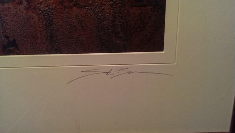 Bad Photography Signature?