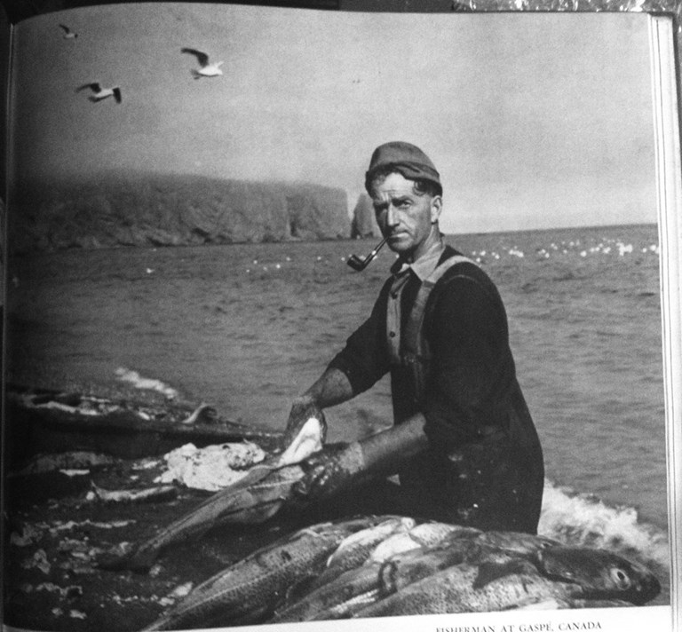 E. Schniewind - Fisherman at Gaspé, Canada