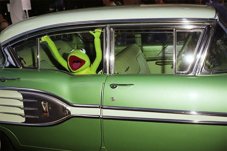Kermit 2011