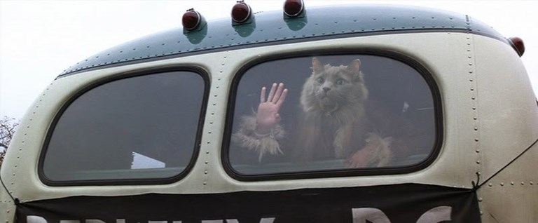 Forrest Gump bus scene with Smoky instead of Jenny