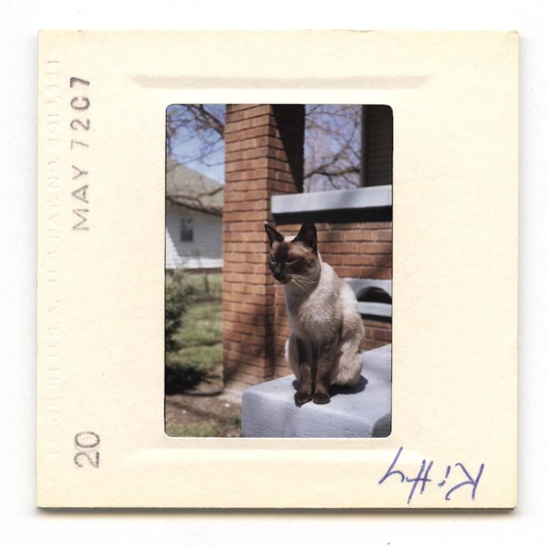 Kitty - 1972