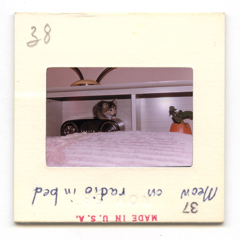 Meow On Radio - 1958