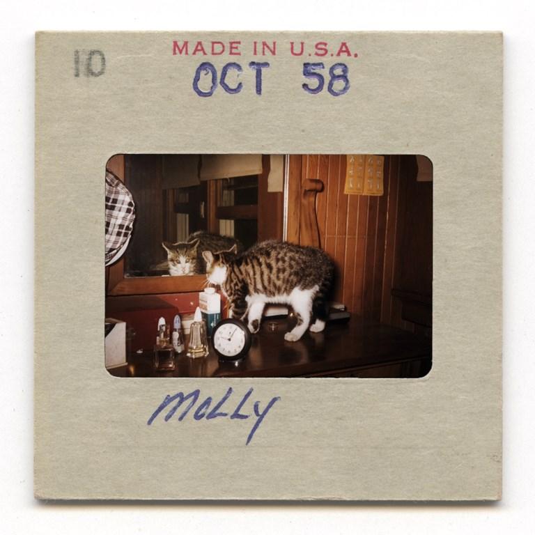 Molly - 1958