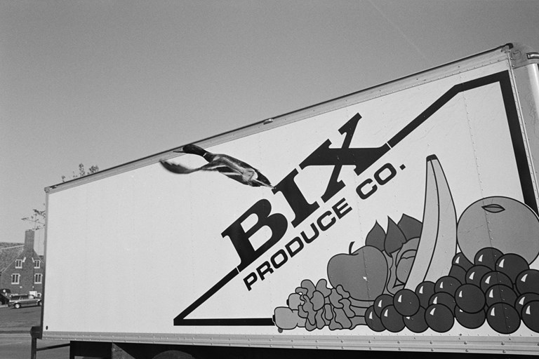 Duck flying in front of a Bix truck.