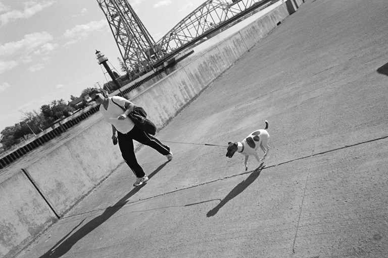 Running dog in canal park.