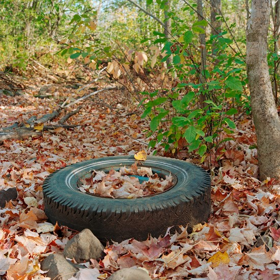 A Fall Tire - Study 1, Duluth, Minnesota, October 2020