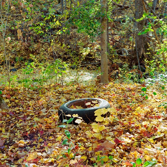 A Fall Tire - Study 2, Duluth, Minnesota, October 2020
