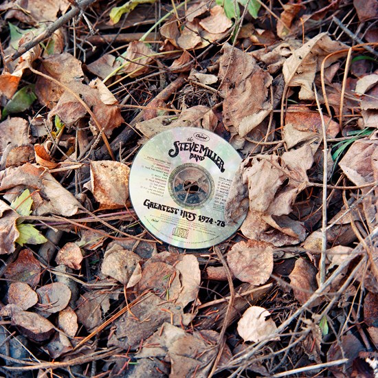 Discarded Steve Miller Band CD, Duluth, Minnesota, November 2020