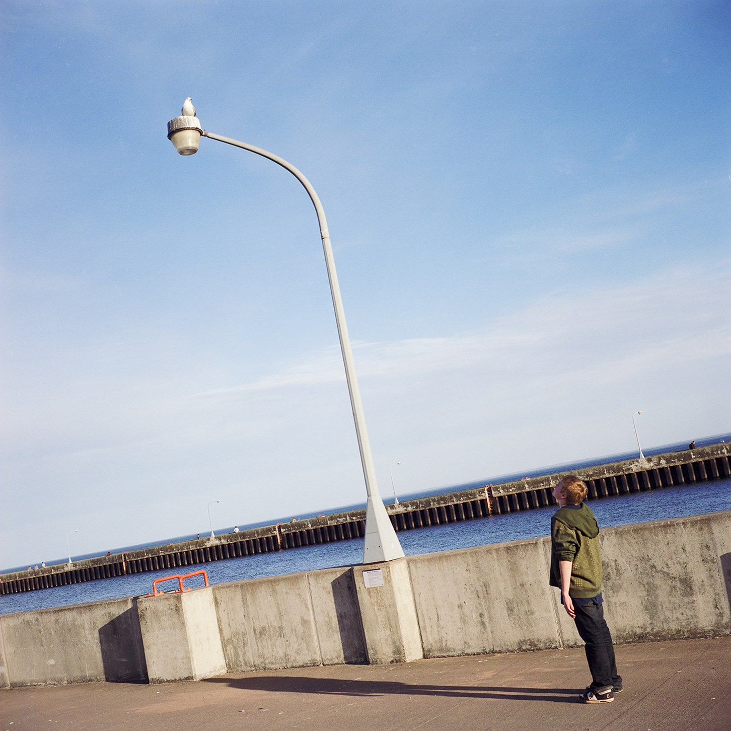 Boy Watching A Seagull, Duluth, Minnesota, March 2010