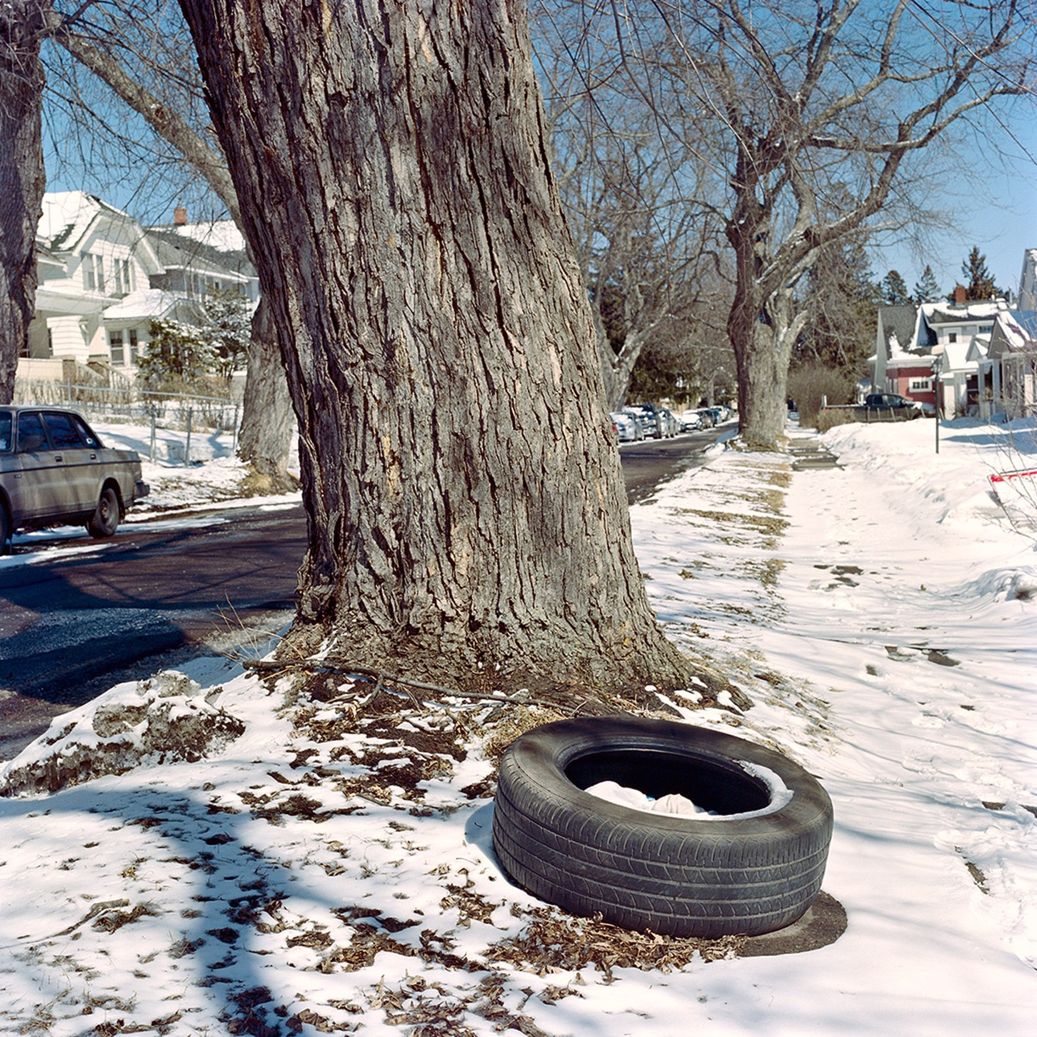 A Tire Near a Tree, Duluth, Minnesota, March 2018