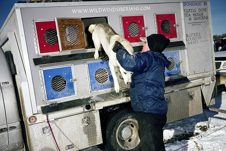 Helping a Dog Out, January, 2011