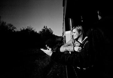 A Woman Rides A Train
