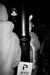 Bunny Behind a Pole