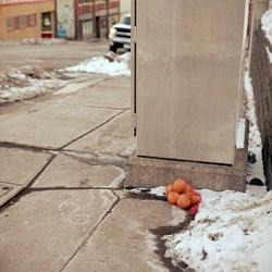 Forgotten Oranges